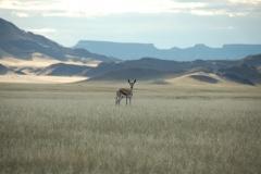 Namibia holiday May 2011