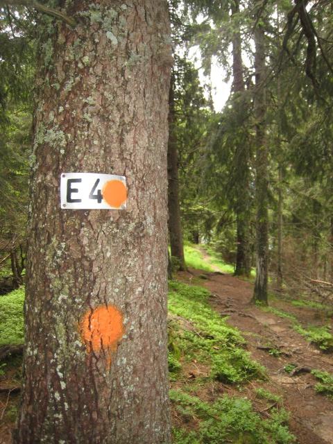 descent to Grafenaschau